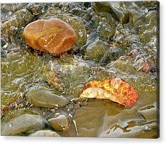 Leaf, Rock Leaf Acrylic Print