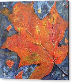 Leaf Seeking Rest Acrylic Print