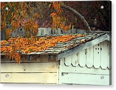 Leaf Shed Acrylic Print by Holly Ethan