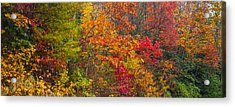 Leaf Tapestry Acrylic Print