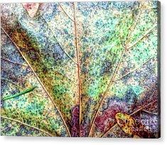 Leaf Terrain Acrylic Print