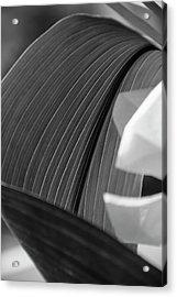 Leaf Texture Acrylic Print