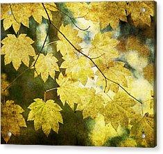Leaf Zen T Acrylic Print by Rebecca Cozart