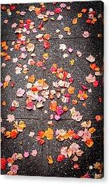 Leafy Autumn Walk Acrylic Print