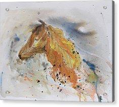 Leafy Horse Acrylic Print