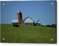 Acrylic Print featuring the photograph Lean Beef by Robert Geary