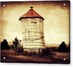 Leaning Tower Acrylic Print by Julie Hamilton