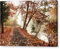 Leaning Tree Acrylic Print