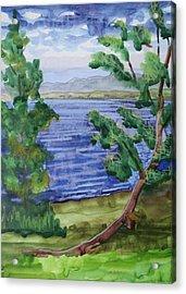 Leaning Tree By Lake Sacandaga Acrylic Print