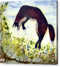 Leaping Fox 1 Acrylic Print