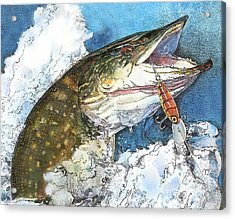 leaping Pike Acrylic Print