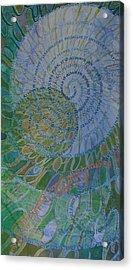 Learning Curves Acrylic Print by Sid Freeman