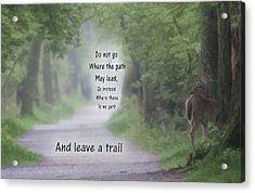 Leave A Trail Acrylic Print by Dan Sproul