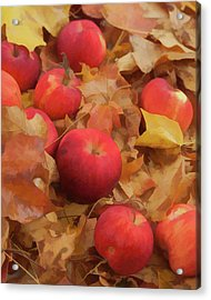 Acrylic Print featuring the photograph Leaves And Apples by Michael Flood