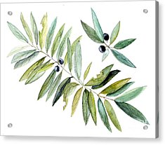 Leaves And Berries Acrylic Print