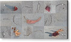 Leaves And Cracks Collage Acrylic Print by Ben and Raisa Gertsberg