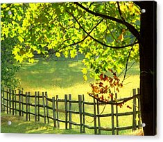 Leaves And Fence Acrylic Print