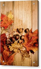 Acrylic Print featuring the photograph Leaves And Nuts 2 by Rebecca Cozart