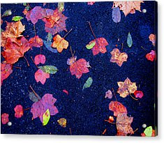 Leaves Acrylic Print by Christopher Woods