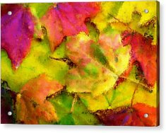 Leaves Of Fall Acrylic Print by Harry Dusenberg