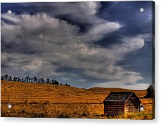 Leaving The Shed Acrylic Print by David Patterson