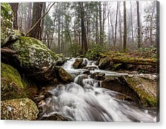 Leconte Creek Acrylic Print by Everet Regal
