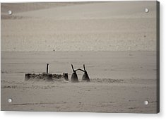 Left Abandonded Acrylic Print by Kandie  Kingery