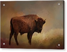 Legend Of Buffalo Spirit Acrylic Print