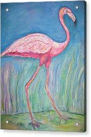 Legs Acrylic Print by Marlene Robbins
