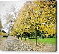 Acrylic Print featuring the photograph Leipzig Memorial Park In Autumn by Ivy Ho