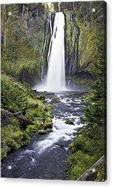 Lemolo Falls Acrylic Print