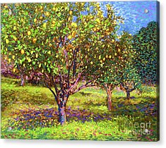 Lemon Grove Of Citrus Fruit Trees Acrylic Print