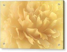Acrylic Print featuring the photograph Lemon Splash by Darlene Kwiatkowski