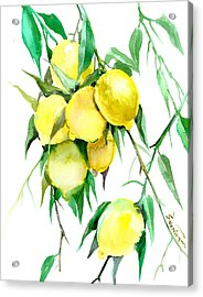 Lemon Tree Acrylic Print by Suren Nersisyan