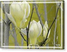 Acrylic Print featuring the photograph Lemon Yellow by Athala Carole Bruckner