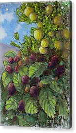 Lemons And Berries Acrylic Print