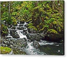 Lena Creek Acrylic Print by Wilbur Young