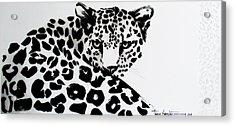 Lenny Acrylic Print