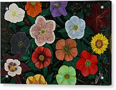 Lenten Roses Acrylic Print