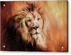 Leo Abstract Acrylic Print