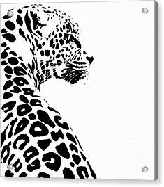Leo-pard Acrylic Print
