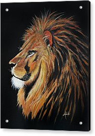 Leonardo Lion Acrylic Print by Adele Moscaritolo