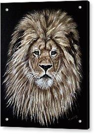 Leonardo Acrylic Print by Teresa Wing