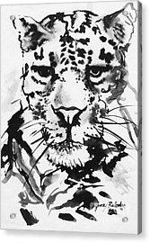 Leopard Acrylic Print by Jamey Balester