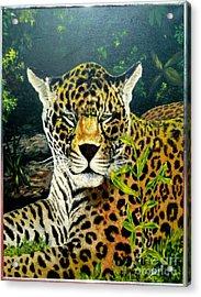 Leopard Acrylic Print by Peter Kulik