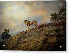 Leos World Acrylic Print