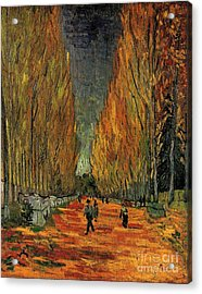 Les Alyscamps Acrylic Print by Vincent Van Gogh