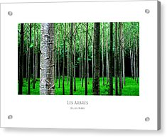 Acrylic Print featuring the digital art Les Arbres by Julian Perry