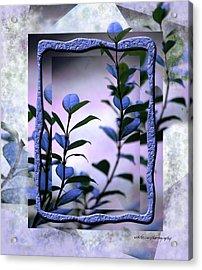 Let Free The Pain Acrylic Print by Vicki Ferrari