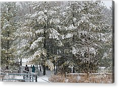 Acrylic Print featuring the photograph Let It Snow by Charline Xia